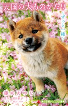 https://www.shogakukan.co.jp/thumbnail/books/09230746