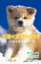 https://www.shogakukan.co.jp/thumbnail/books/09231275