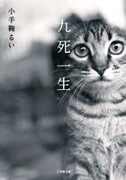 愛猫喪失から立ち直っていく男女を描く物語『九死一生』