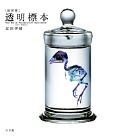[新世界]透明標本